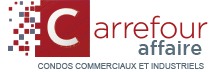 Carrefour Affaire Logo